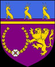 File:KingSarumIOfScotannaeaCoat.PNG