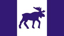Big Official Purple