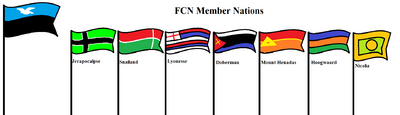 Fcn flags