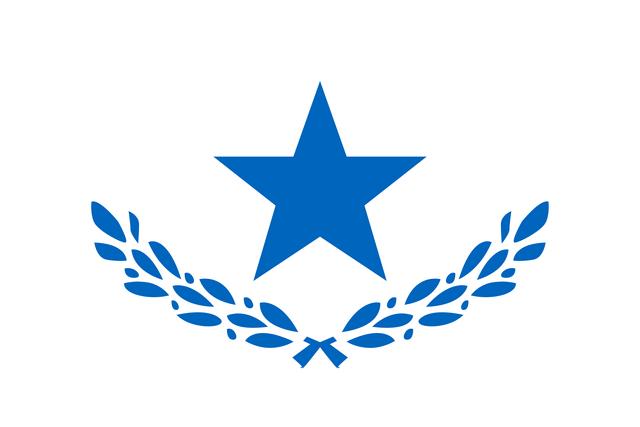 File:Flag of PMMRU.png