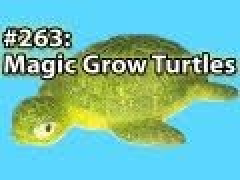 Magic grow turtles