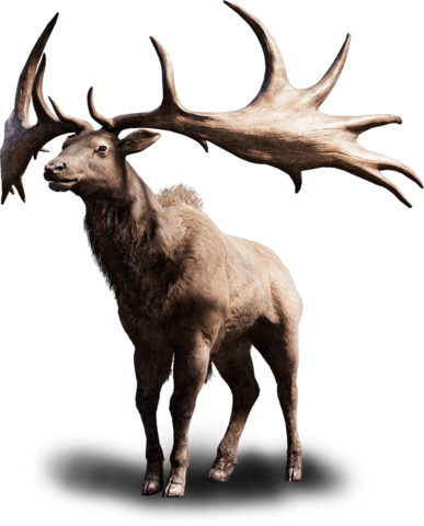 File:Far cry primal tall elk.png
