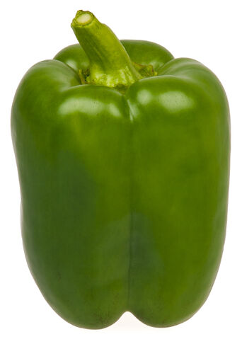 File:Green-Bell-Pepper.jpg