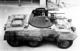T69-MGMC-haugh