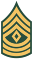 100px-US Army E-8 1SG svg.png
