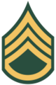 100px-US Army E-6 svg.png