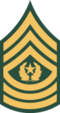USAr insignia e9comm wag22