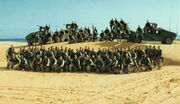 75th Ranger Regiment Bravo Company 3rd Batallion Somalia 1993
