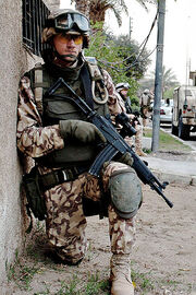 Estonian soldier DA-SD-06-03436 c1