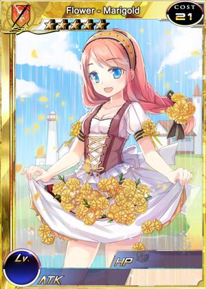 Flower - Marigold s1