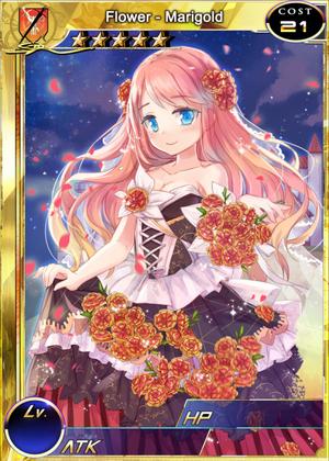 Flower - Marigold m