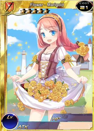 Flower - Marigold 1