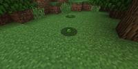 Frog (LotsOMobs Mod)