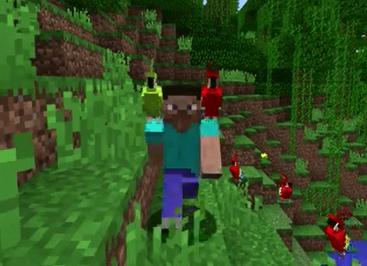 Parrot Minecraft Wiki Fandom Powered By Wikia