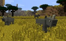 File:Rhinos.jpg