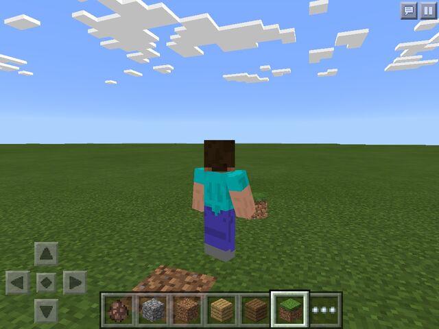 File:Steve With A Grass Block.jpg