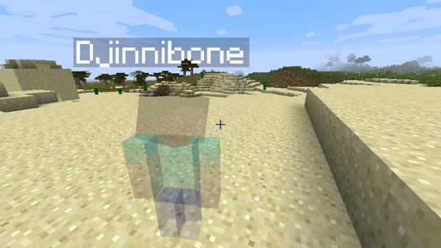 File:Minecraft-spectators.png