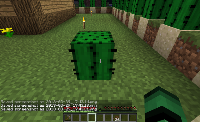 File:Cactus on Grass 3.png