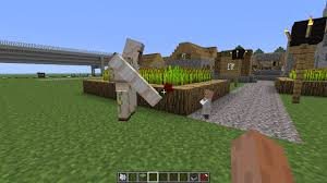 File:Iron Golem giving a baby villager a poppy.jpg