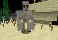 An Iron Golem Inside A-Player-made Structure