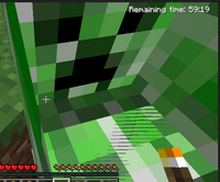 Whats inside a creeper