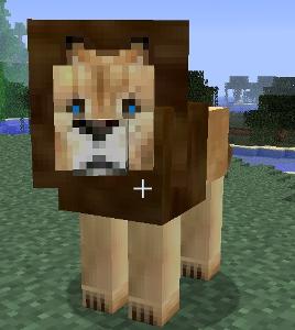 File:Male Lion.jpg
