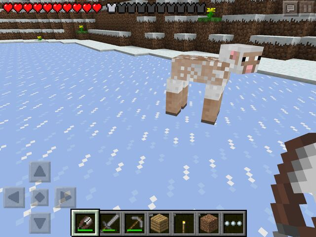 File:Pocket Edition sheared sheep.jpg