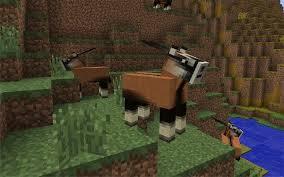 File:Antelope.jpg
