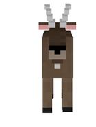 Goats - Copy (4)