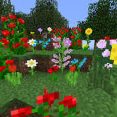 Flower Forests
