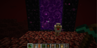 Nether Portal/Gallery