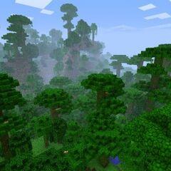 Jungle <a href=