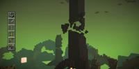 Magnus' Tower