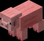 150px-Pig-1-