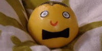 Gordon the Grapefruit