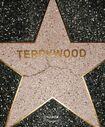 Terry-Richardson-TERRYWOOD-Book-22