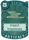 Insect Intestines