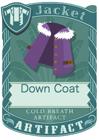 Down Coat Purple