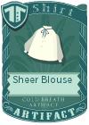 Sheer Blouse Blue