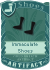 Immaculate Shoes
