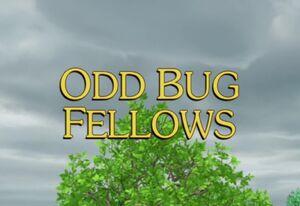 Sunny Patch Odd Bug Fellows