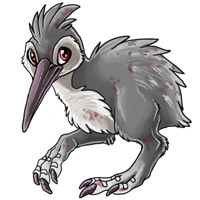 Plague nokwi