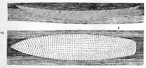 RdgA Bd4, Tafel 12, Abb.13