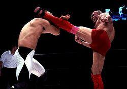Bas Rutten high kick