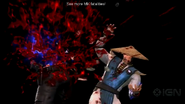 Raiden fatality