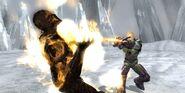 Mortal-kombat-vs-dc-universe-20081025104312266 640w