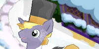 Elite Pony