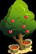 Harvest-Ready Tree