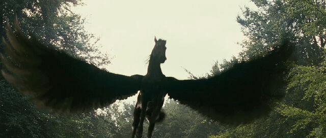ไฟล์:Pegasus.jpg