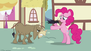 """Pinkie Pie and Cranky """"I can fix this!"""" S02E18.png"""